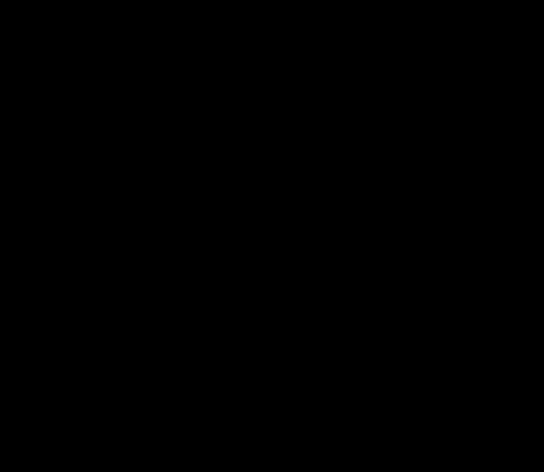 foglia palma scura